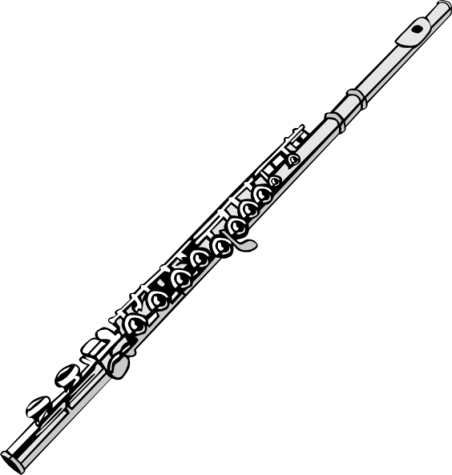 The flute is one of many instruments used in a band. It is a part of the woodwind family and produces sound 通过 blowing air across its mouthpiece.